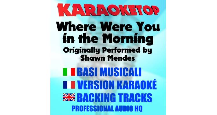 Where Were You in the Morning - Shawn Mendez (karaoke, base musicale)