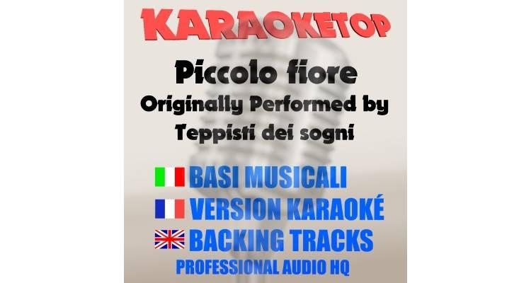 Piccolo fiore - Teppisti dei sogni (karaoke, base musicale)