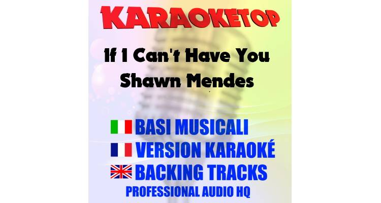 If I Can't Have You - Shawn Mendes (karaoke, base musicale)